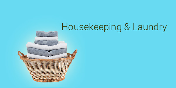 flipkart_everyday_essentials_housekeeping_laundry